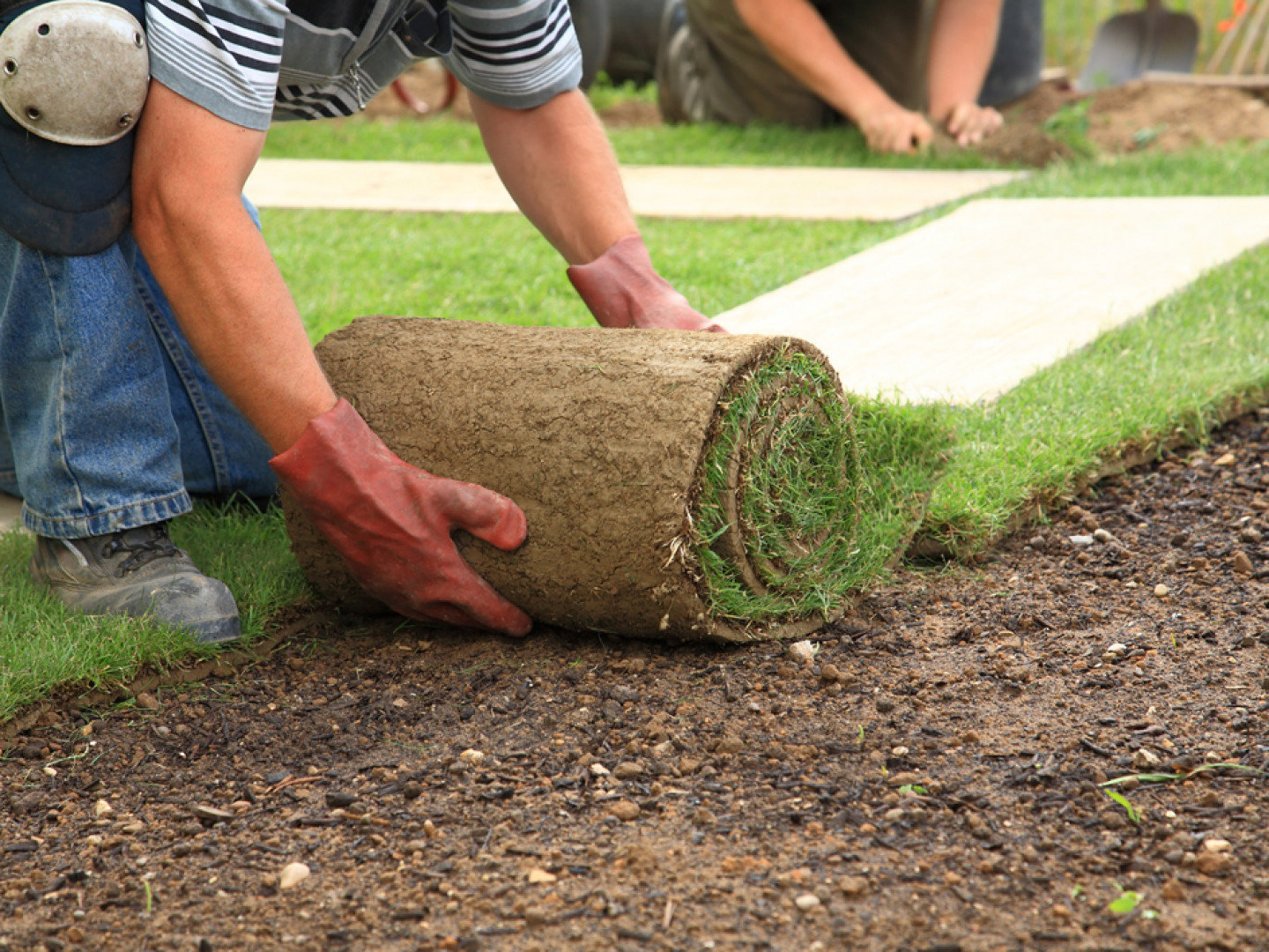 Grass Sod Installation in Riverside, CA